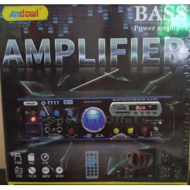 Car-Home Bass Amplifier