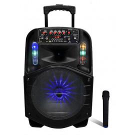 Box Speaker 12i